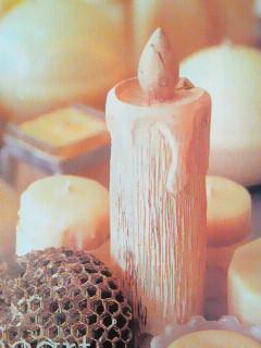 木のキャンドル 012