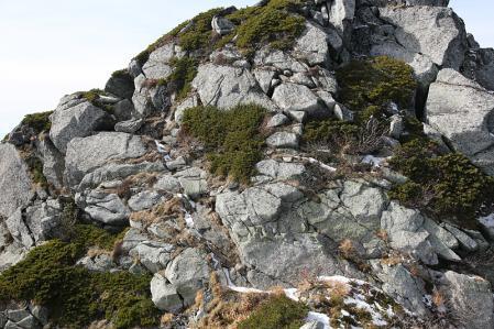 南駒ケ岳へ続く北沢尾根は結構手ごわい