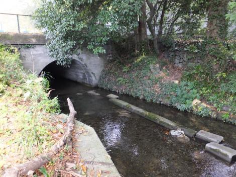 中津川・田代取水口、用水路