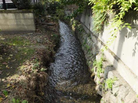 田代取水口から始まる用水路・中津神社下流