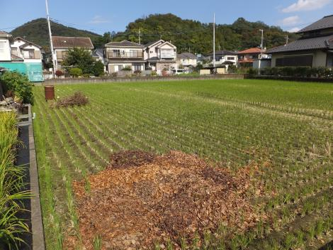 田代取水口から始まる用水路・田代運動公園付近