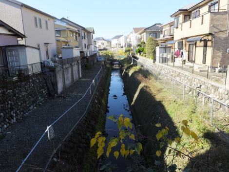 定光沢より酒匂川左岸幹線用水路を望む
