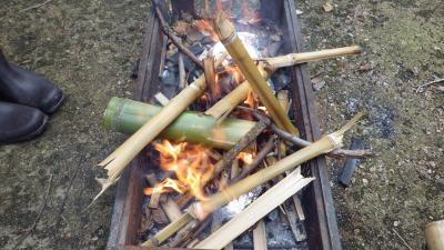 燃えろ、竹!