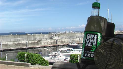 20120910_wasabi-ginger1.jpg