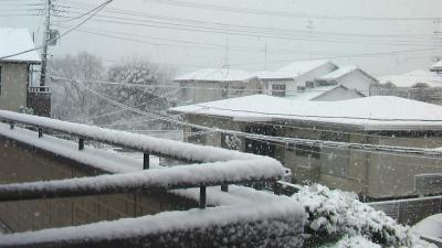 20130114雪2