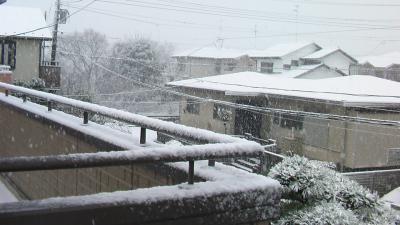 20130114雪1