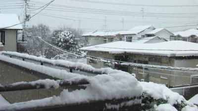 20130114雪4