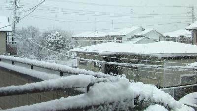 20130114雪3