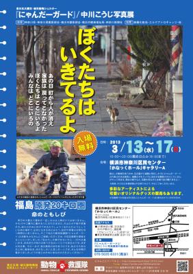 横浜写真展s