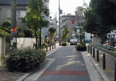 歩車共存道路の事例1シケイン