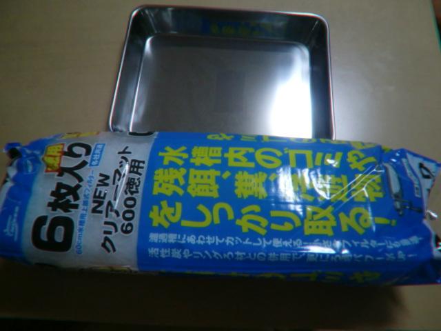CIMG6660.jpg