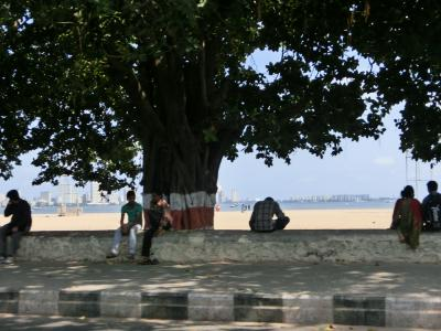 海辺景色2_convert_20120710145700