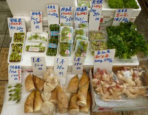 春の野菜blog01