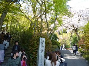2013413鈴虫寺blog01