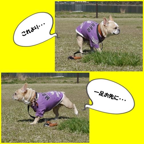 page9_20141030222545dae.jpg
