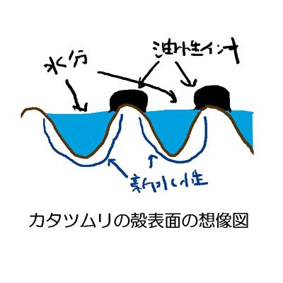 121016_01.jpg