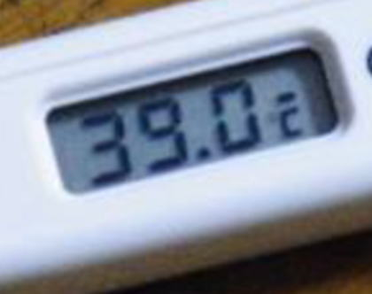 ybk-1.jpg
