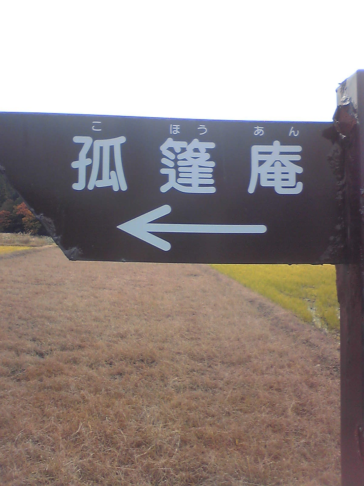 Image641.jpg