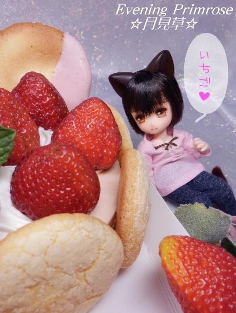 春のケーキ02