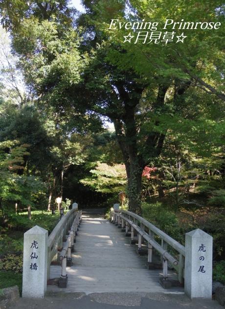 徳川園03