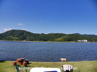 summervacation2012-2.jpg