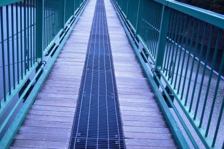 橋が透けてる・・・