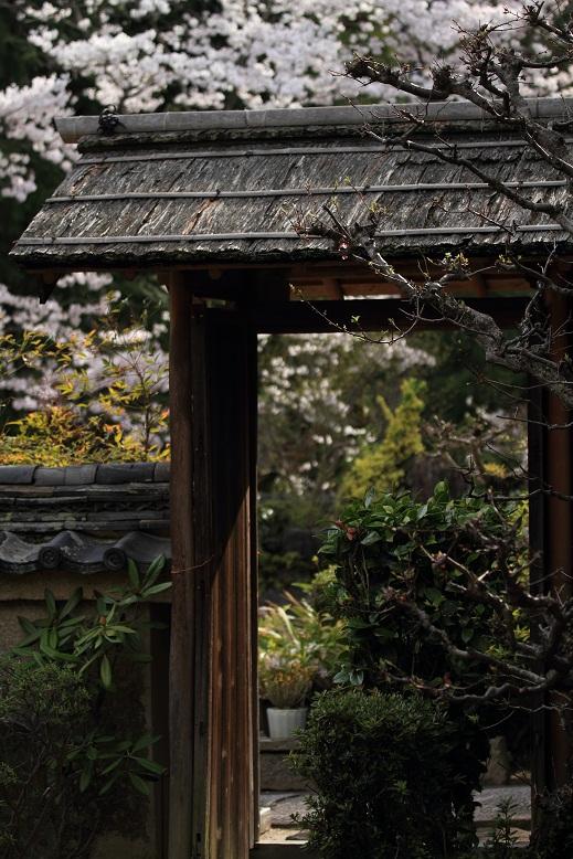 長弓寺、5