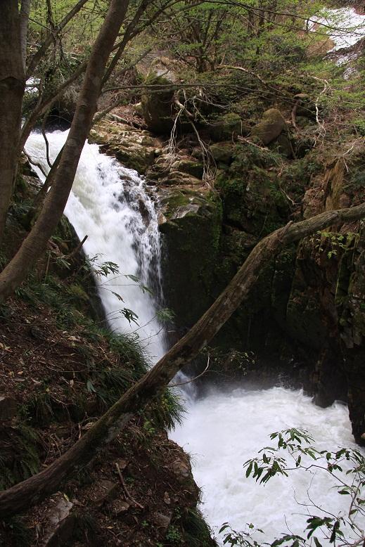 霧ヶ滝渓谷、11