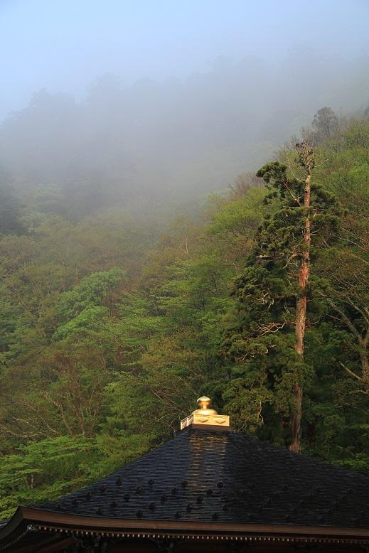 龍泉寺、1