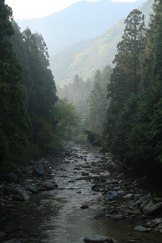 洞川自然研究路、3
