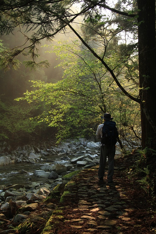 洞川自然研究路、5