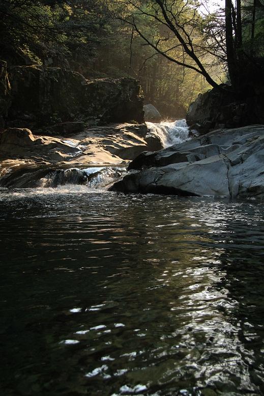 洞川自然研究路、6