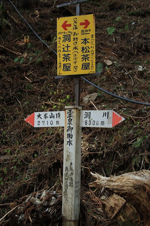 登山道、4
