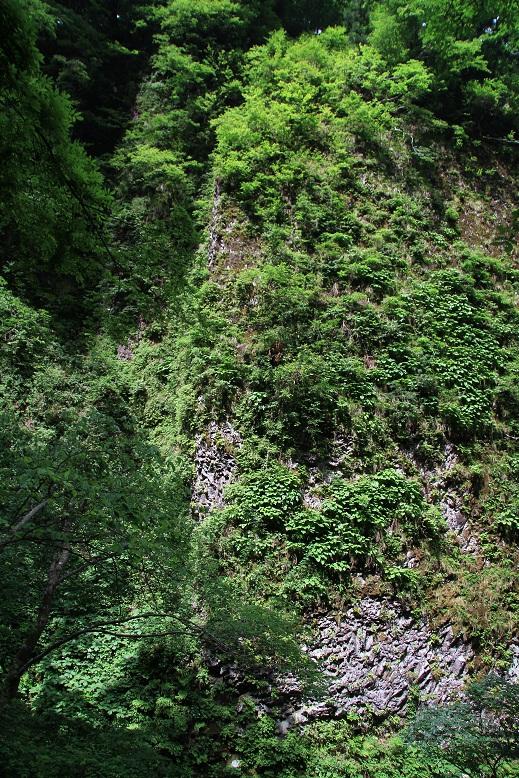 シワガラの滝、4