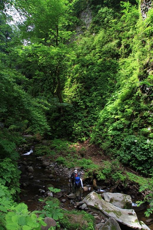 シワガラの滝、5