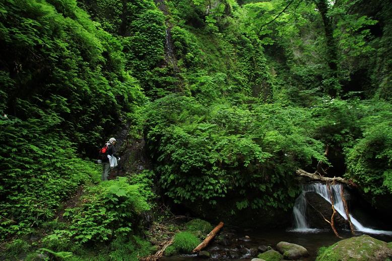 シワガラの滝、7