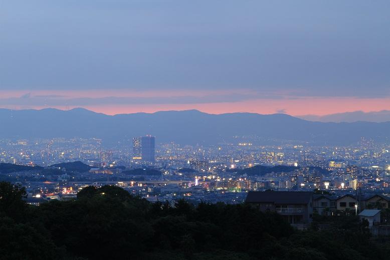 下赤坂の棚田、10