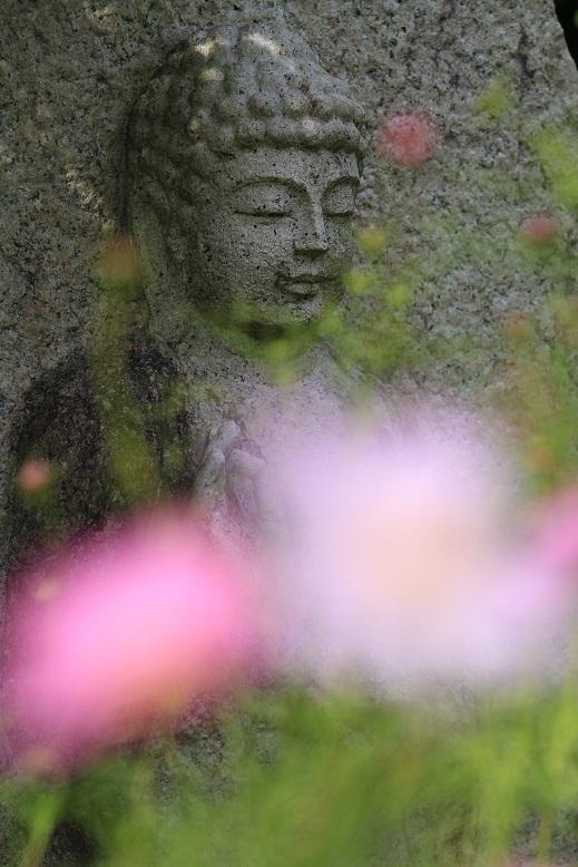 般若寺、8