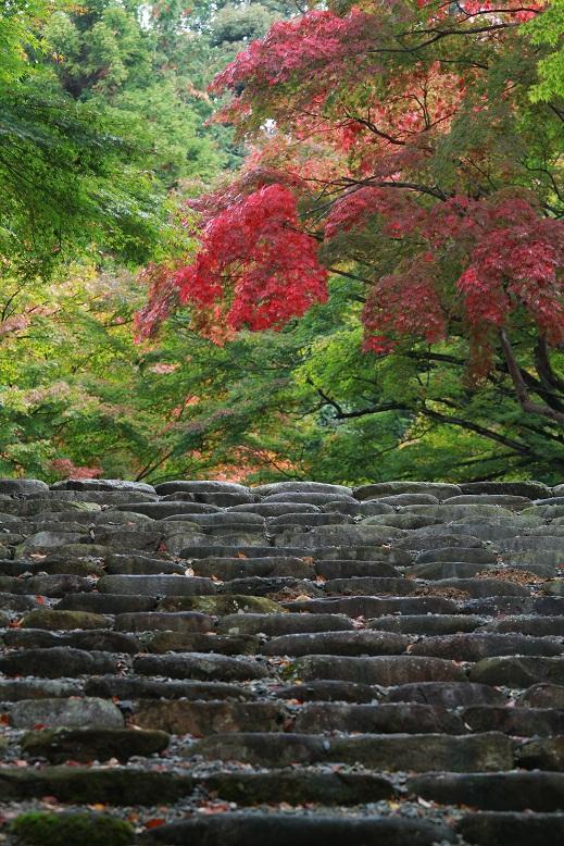 胡宮神社、2