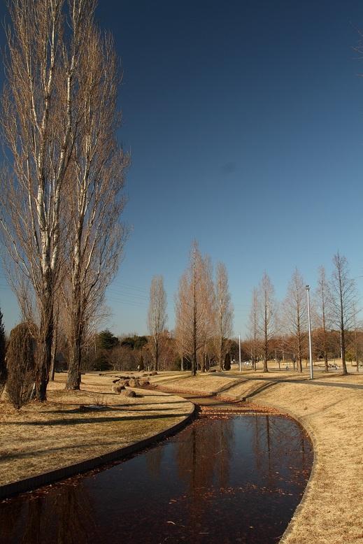 山田池公園にて、1