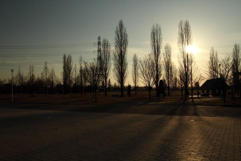 山田池公園にて、7