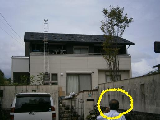 kimomo2.jpg