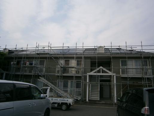 suzua8.jpg
