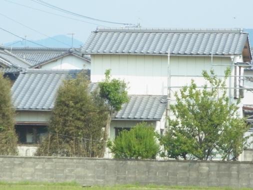 tatuma6.jpg