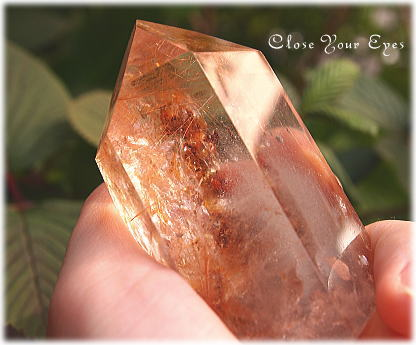 garden-quartz6.jpg