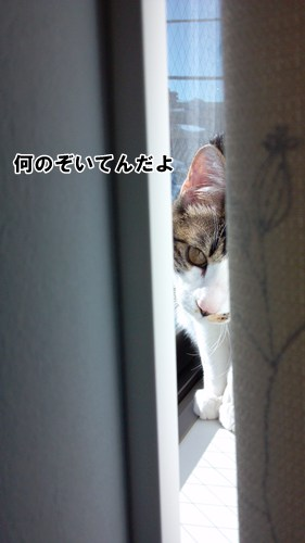 2013-01-18_13-48-02_190.jpg