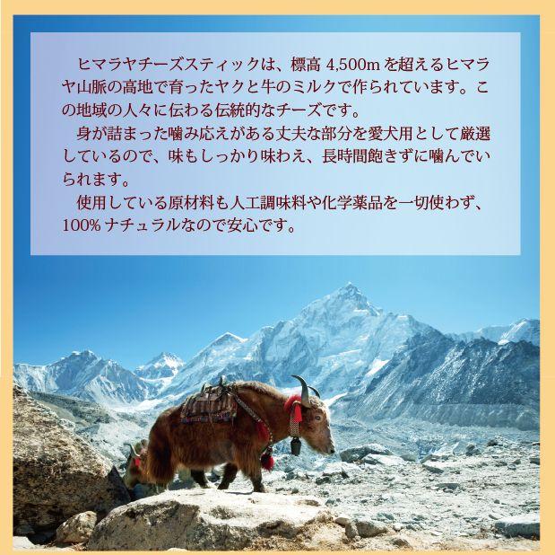 image-himalaya4.jpg