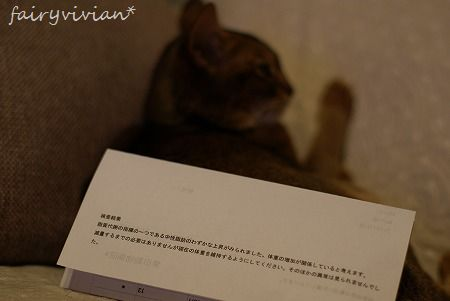 vivian120706 6