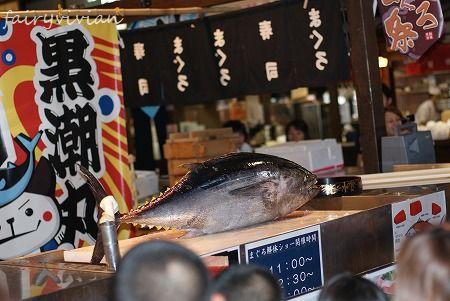 wakayama120815 6