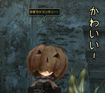 wo_20130407_4.jpg